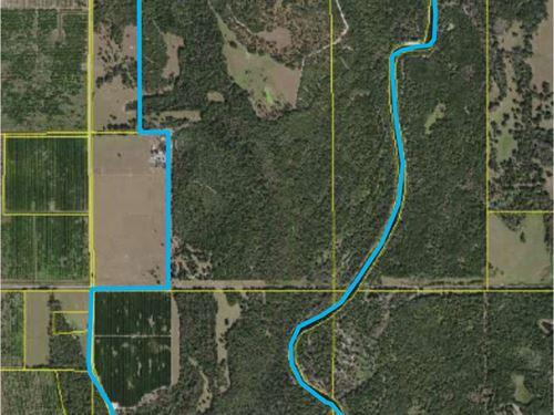750 Acre Hunting Ranch Arcadia : Arcadia : Desoto County : Florida