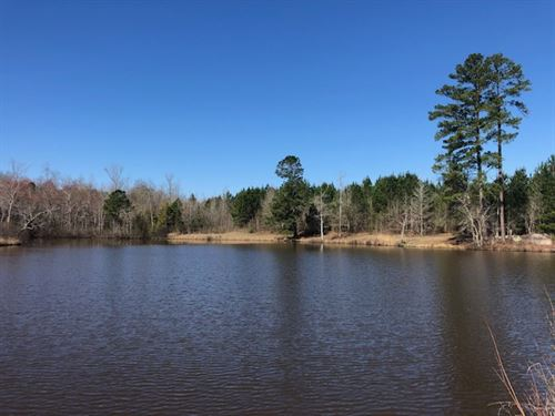 Pond, Cabin, Big Timber : Sparta : Hancock County : Georgia