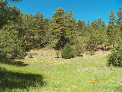 Diverse Home And Recreational Lot : Trinidad : Las Animas County : Colorado