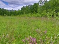 Mixed-Use Acreage Near The Lake : Kirkville : Madison County : New York
