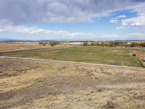 Irrigated Horse Prop & Building Lot : Powell : Park County : Wyoming