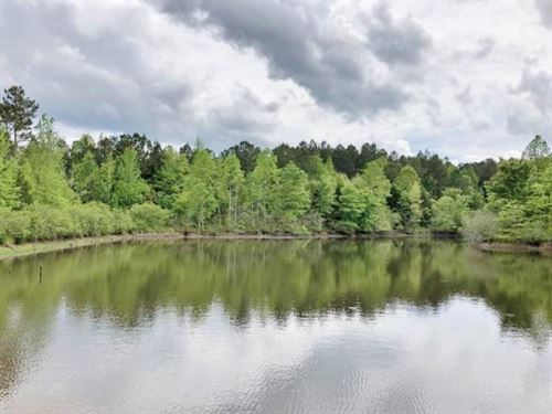 75 Acres Timber, Lake, Hunting Land : Booneville : Prentiss County : Mississippi