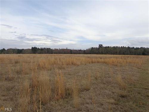 29 Acre Lot Unlimited Potential : Sylvania : Screven County : Georgia