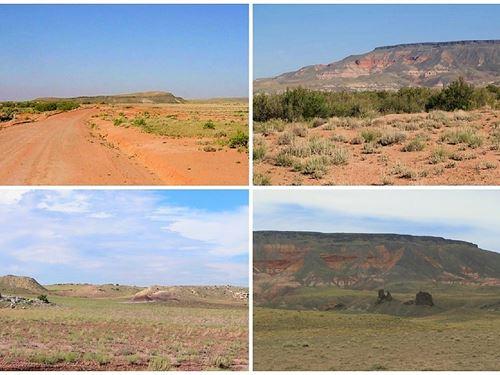 Beautiful Secluded Acreage : Holbrook : Navajo County : Arizona