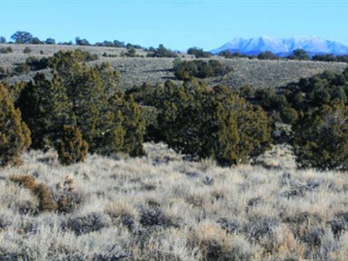 Murdock Mountain Nevada Ranch Creek : Montello : Elko County : Nevada