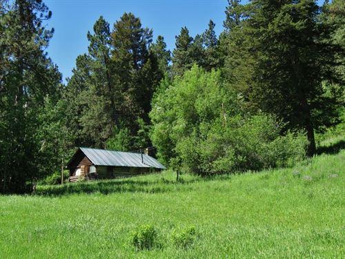 Lewistown Montana Log Cabin Land : Lewistown : Fergus County : Montana