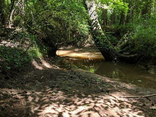 21 Acres, Chester County, Sc : Chester : South Carolina