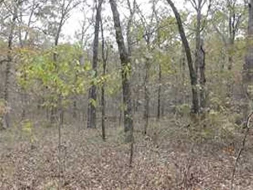 40 Acres in Benton County Missouri : Lincoln : Benton County : Missouri