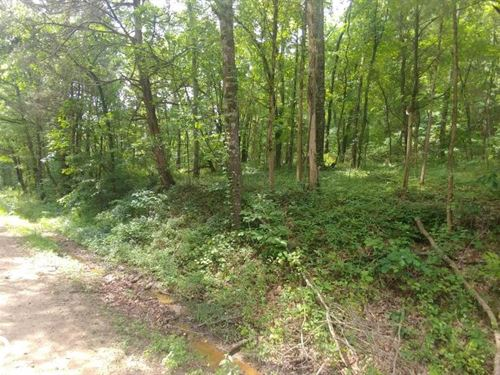 18.04 Acres Residential And Hunt : Lamar : Johnson County : Arkansas