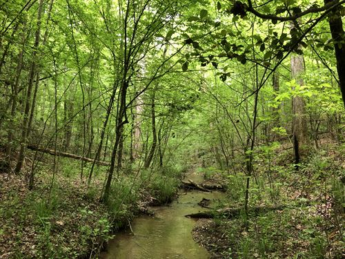 Greer Homesite & Recreational Land : Greer : Greenville County : South Carolina