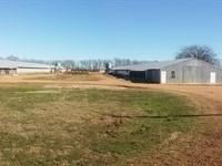 Tyson Contracted Breeder Farm $175K : Bradley : Lafayette County : Arkansas