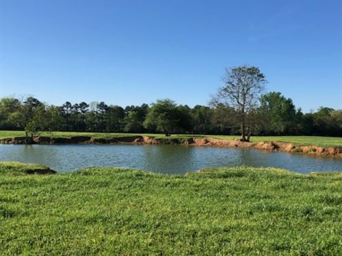 64 Acres Cattle Operation With Trai : Magnolia : Pike County : Mississippi
