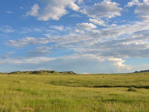 Red Top Ranch : Pueblo : Colorado