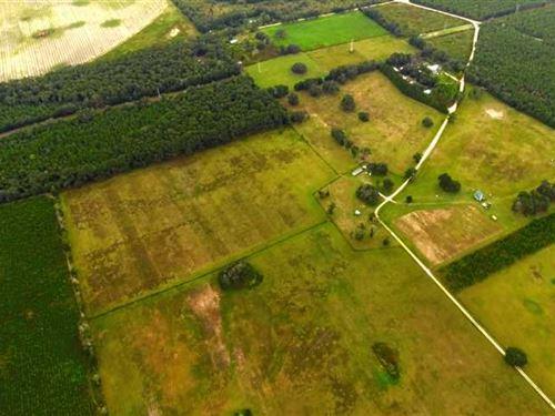 583 NE Coconut Trail Dorst : Madison : Florida