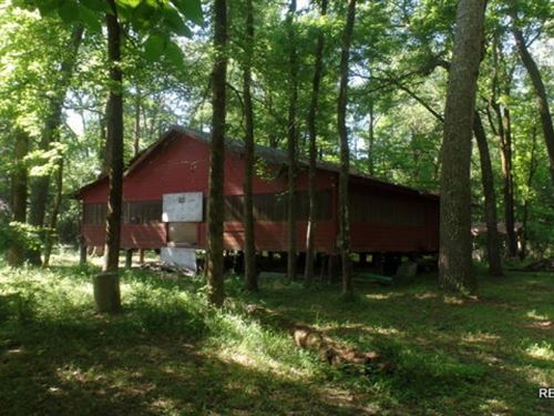 29.1 Ac, Hardwood Hunting Tract WI : Burkeville : Newton County : Texas