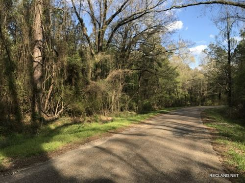 80 Ac, Timberland With Home Site : Bastrop : Morehouse Parish : Louisiana