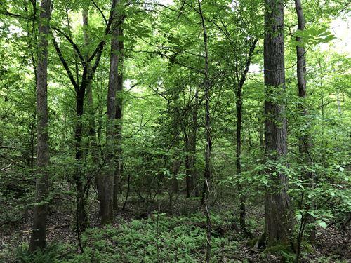 Greer Homesite Recreational Land, A : Greer : Greenville County : South Carolina