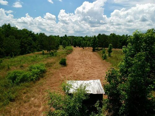Rocky Mount Property : Eufaula : Barbour County : Alabama