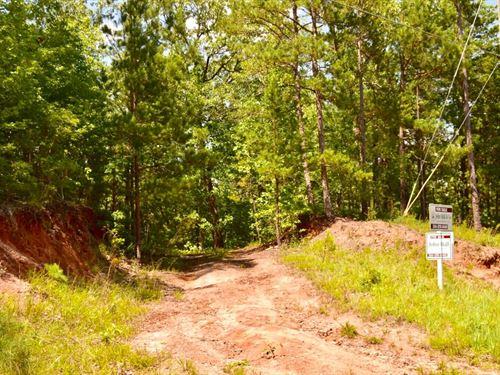 Wright Property : Verbena : Chilton County : Alabama
