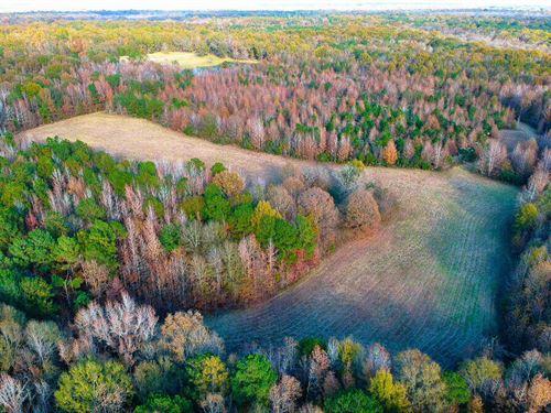 Collett Property : Cecil : Montgomery County : Alabama