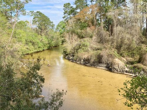 The Styx River Persimmon Creek Oasi : Robertsdale : Baldwin County : Alabama