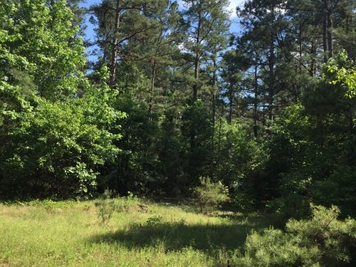 Pine Hunting Land State Park : Chidester : Ouachita County : Arkansas