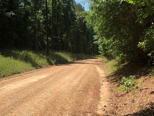 Pine Timber Land Public Road : Rosston : Nevada County : Arkansas