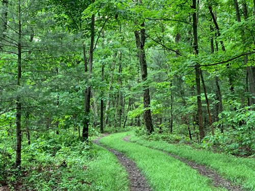 23 Acs Land, Hunting Opportunities : Millville : Columbia County : Pennsylvania