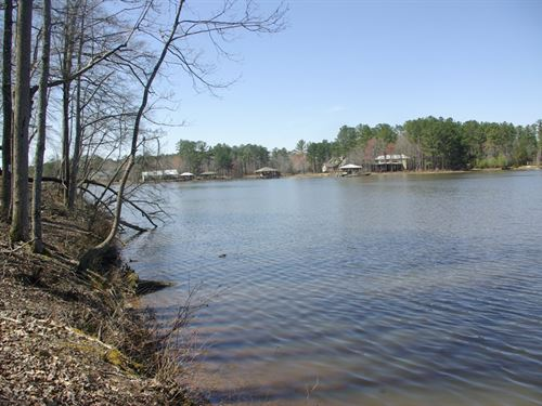 Neely Henry Lake 57 Acres, 1400 Ft : Ashville : Saint Clair County : Alabama