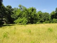 Mahaffey Farm : Belton : Anderson County : South Carolina