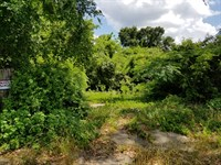 Online Auction Versatile Land Tract : Gilmer : Upshur County : Texas
