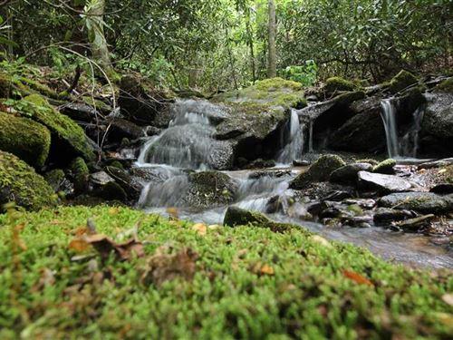 28.3 Acres in Black Mountain : Black Mountain : Buncombe County : North Carolina