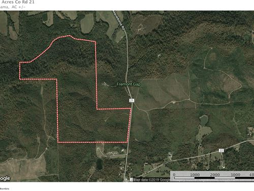 233+/- Ac Hunting/ Cabin Sites : Ashville : Saint Clair County : Alabama