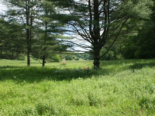 Beautiful Farm, Stream, Views : Elk Creek : Grayson County : Virginia