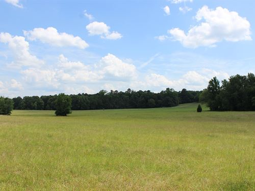 Riverfront Pasture Land : Milledgeville : Baldwin County : Georgia