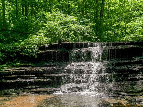 Unforgettable Acreage : Franklin : Williamson County : Tennessee