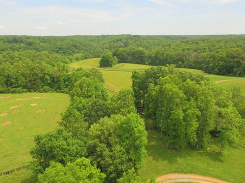 Spectacular Countryside : Franklin : Williamson County : Tennessee