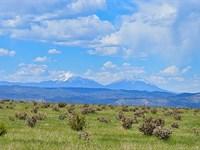 Patton Arroyo Ranch For Sale : Trinidad : Las Animas County : Colorado