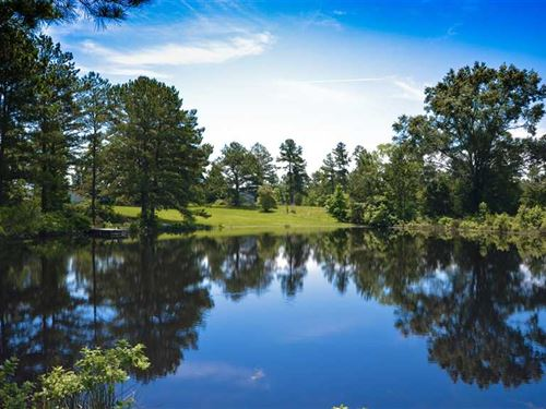 94 Acres, East Texas Timber, Past : Cushing : Nacogdoches County : Texas
