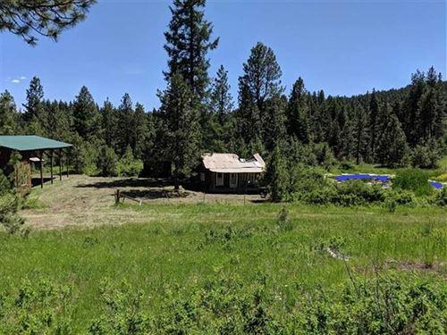 McDaniel Creek : Heppner : Morrow County : Oregon
