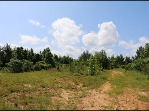 100.6 Acres In Scott County In Waln : Walnut Grove : Scott County : Mississippi