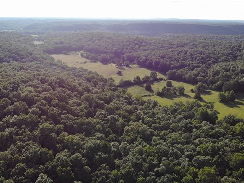 125 Acre Recreational Land : Marquand : Bollinger County : Missouri