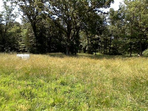 50 Acres of Good Timber : Stockton : Cedar County : Missouri