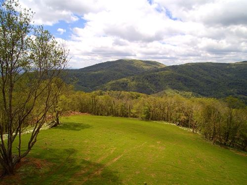 Acreage, Great Access : Independence : Grayson County : Virginia