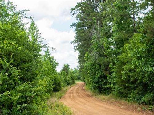 The Chance Of A Lifetime : Grapeland : Houston County : Texas