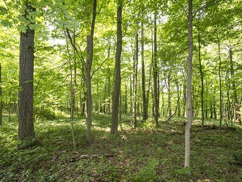 TR 629, 20 Acres, Ashland County : Loudonville : Ashland County : Ohio