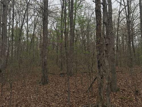 Prime Hunting Ground S.E, MO : Poplar Bluff : Butler County : Missouri