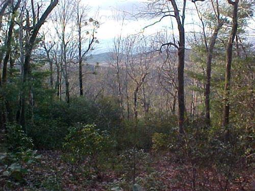 24.32 Acres Land Sell Patrick : Stuart : Patrick County : Virginia