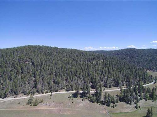 36 Acre Mountain Home & Large Meta : Cloudcroft : Otero County : New Mexico