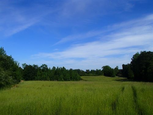 53 Acres In Winston County In Louis : Louisville : Winston County : Mississippi